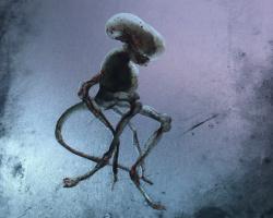 Una imagen del steelbook de Alien: Covenant