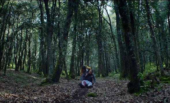 Perdidos en el bosque de La región salvaje