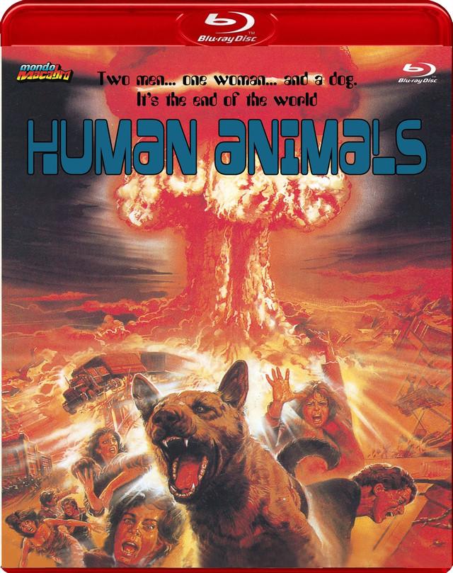 Portada del Blu-ray de Mondo Macabro de Animales racionales, dirigido por Eligio Herrero
